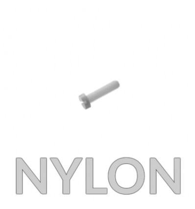Vis TC M2.5 X 10 MM NYLON PA6-6 DIN 84 - lot de 10